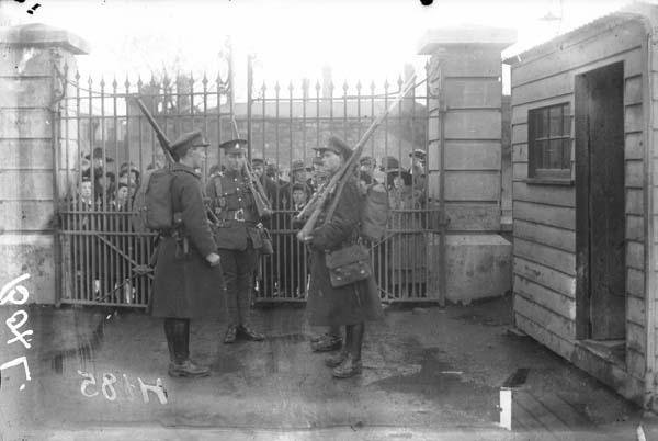 wellington sentries